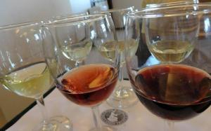 Wine hues.....