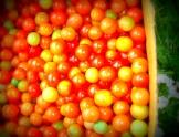 Beautiful Cherry toms