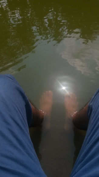 Free fish pedicure at Gunvante , Honnavar