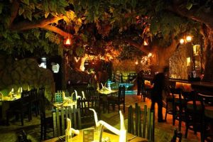 Rainforest Ambience Pic credits: Rainforest resto-bar