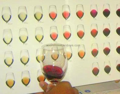 Wine tasting Mumbai