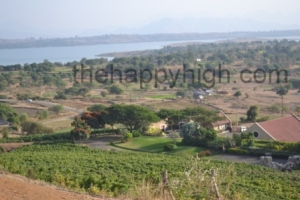 Grover Zampa Wine Tour (10)